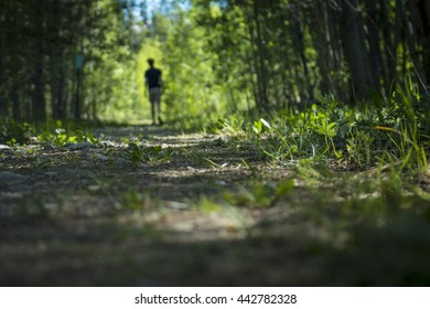 Out-of-Focus Man Walking in Woods