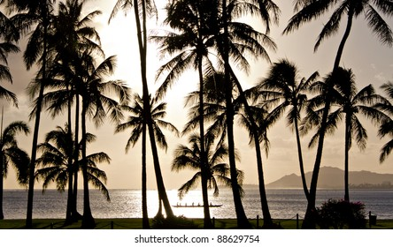 Outrigger canoe paddling behind palm trees in Hawaii