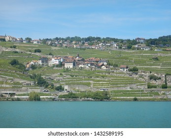 Outskirts of Lausanne with terraced vineyards of Lavaux UNESCO region viewed from middle of Lake Geneva on a sunny blue Summer day