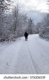 Outskirts of the village in winter. Transcarpathia