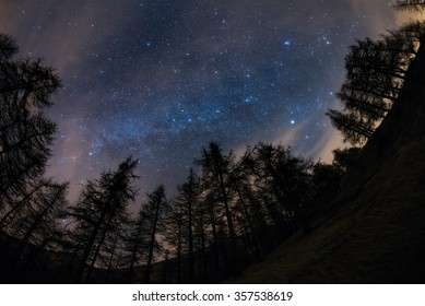The outstanding beauty of the starry sky and Milky Way in winter season, captured from black conifer woodland. Scenic distortion due to fisheye lens, acceptable digital noise due to 1600 iso setting.