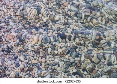 oval smooth pebble on the sea coast