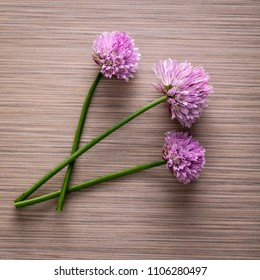 Over head photo of chives flower blossoms.