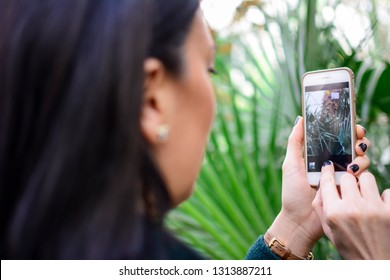 Over shoulder view of unrecognizable woman taking picture with smartphone in beautiful botanical garden indoor. Botanical green garden full of greenery. happy, blur, clean, bright, modern, colorful.