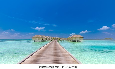 Over water bungalows on a tropical island with palm trees and amazing vibrant beach. Luxury vacation and summer holiday background and travel destination concept. Beach panorama