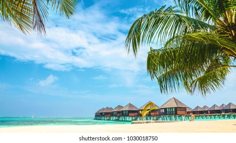 Over water bungalows and tropical sandy beach with palm tree, Maldives