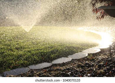 Over watering  with sprinklers on a green lawn and bricks in the summer afternoon.  Environment water waste.
