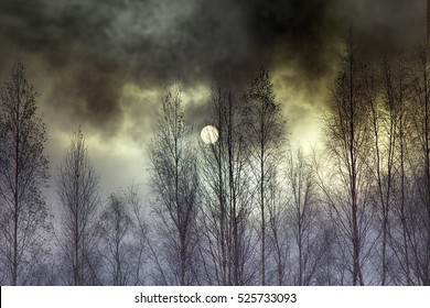 Overcast day, atmosphere of anxiety and fear. Landscape dark atmosphere, sun as moon through dark run clouds behind bare branches of trees, before storm sky, psychic tension, anxiety state