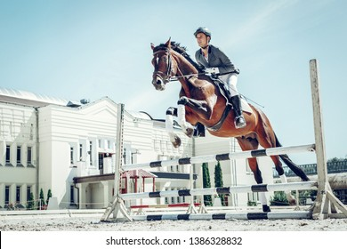 Overcoming obstacles. Beautiful graceful horse jumping over the barrier while having a rider on its back