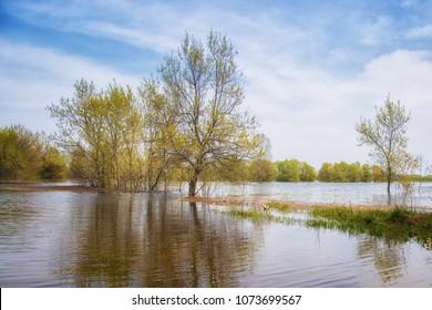 Overflown Zagyva river in Hungary during spring
