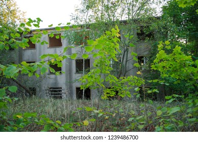 Overgrown and abandoned building in eastern Germany