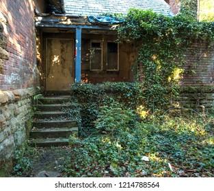 Overgrown garden and porch steps