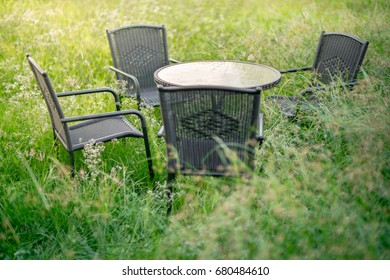 overgrown gardens with table and chairs