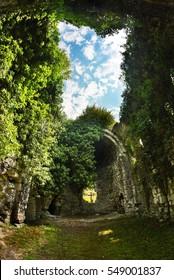 Overgrown ruins of ancient church VI-VII century, Abkhazia