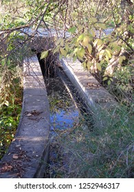 Overgrown small water channel in Andalusian December sunshine