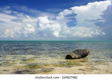 Overgrown stone in water gulf ocean at Cuba.