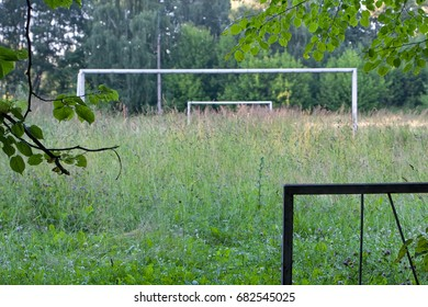 Overgrown with tall grass, the old football field. Summer day.