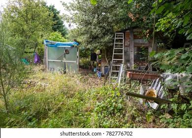 Overgrown untidy messy garden background