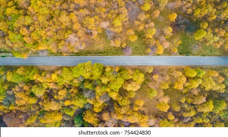 Overhead aerial top view over straight road in colorful countryside autumn forest.Fall orange,green,yellow,red tree woods.Mountain rectilinear street path background.Straight-down above perspective.