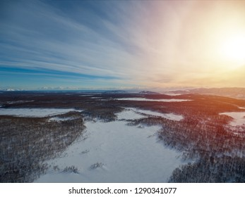 Overhead aerial view at winter forest at dawn