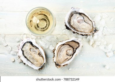 An overhead photo of freshly opened oysters on ice, with a glass of white wine and a place for text