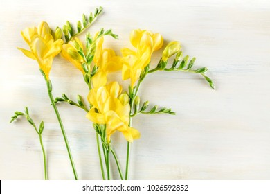 An overhead photo of yellow freesia flowers on a light wooden texture with a place for text, a spring design template with copy space