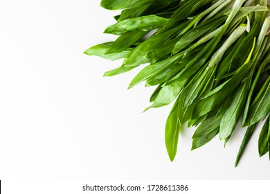Overhead shot of greenery for salad on the white background