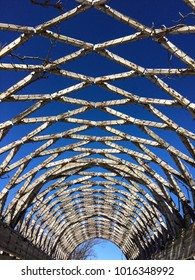 Overhead trellis and sky