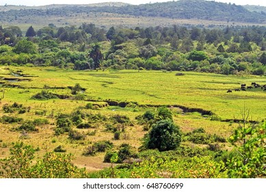 Overhead view of Arusha National Park, Tanzania