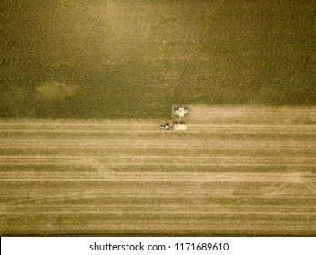 overhead view cornfield harvest fall 2018