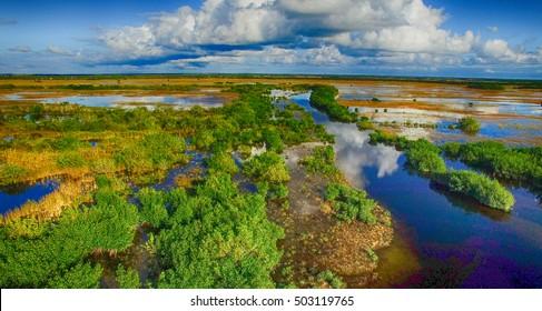 Overhead view of Everglades swamp, Florida - USA.