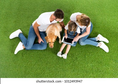 overhead view of family using digital tablet while sitting on green grass