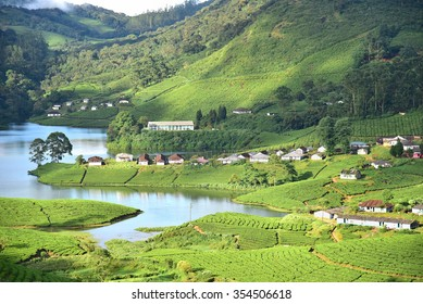 Overhead view of lush green tea plantation at Meghamalai, The beautiful Meghamalai river meanders through the estate. Kerala tourism. God's own country. Far from the madding crowd.