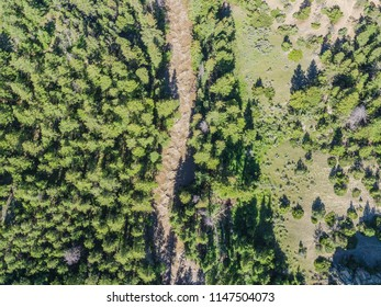 Overhead view of muddy river and green forested valley in a Wyoming National Forest.
