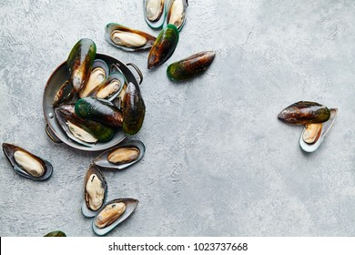 Overhead view of raw kiwi mussels in copper plate on textured light colored background with text space left