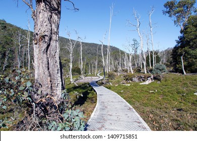 The Overland Track is an Australian bushwalking track traversing Cradle Mountain-Lake St Clair National Park, at the north of the Tasmanian Wilderness World Heritage Area.