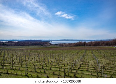 overlook point on Old Mission Peninsula in Traverse City Michigan winery vineyard overlooking lake Michigan Grand Traverse Bay