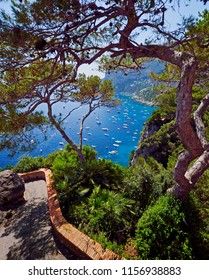 Overlook view of Marina Picola on Capri Island, Italy