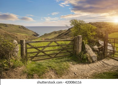 Overlooking a farm gate towards the sea, Devon, England.