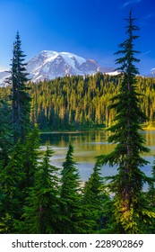 Overlooking a lake and a forest of pine trees with Mt. Rainier looming in the distance, Mt. Rainier National Park, Washington, USA.
