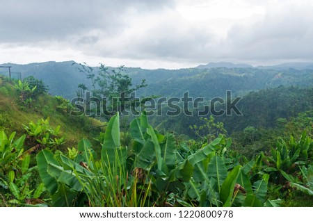 overlooking valley and cloud forests of cordillera central range in jayuya puerto rico