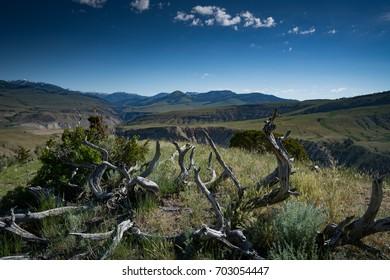 Overlooking Yellowstone National Park