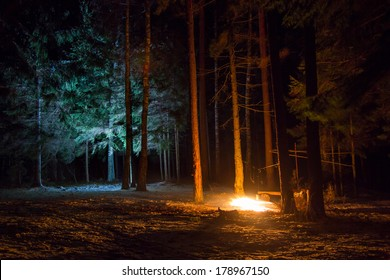 Overnight camp in the forest