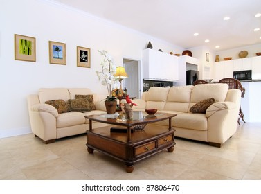 Overview of a beautiful classic family room  in a private residence  with the open kitchen in the background