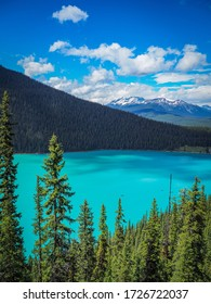 Overview over the beautiful turquoise lake Louise