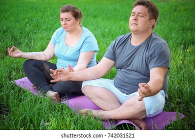 Overweight couple training together on green grass
