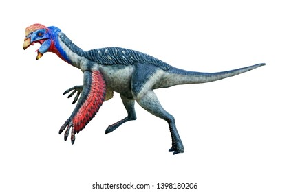Oviraptor is a carnivorous genus of small Theropod dinosaurs, Oviraptor lived in the late Cretaceous period, isolated on white background with clipping path