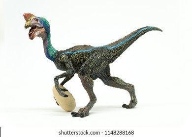 Oviraptor on white background