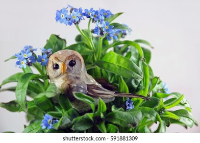 Owl among forget-me-nots, symbols of wisdom and memory loss, one of the symptoms of Alzheimer's disease.