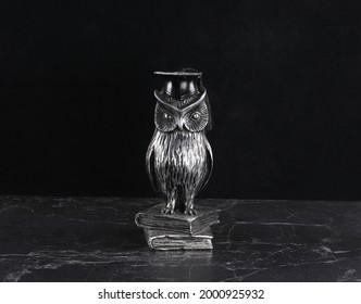 owl figurine, a symbol of wisdom on a black background